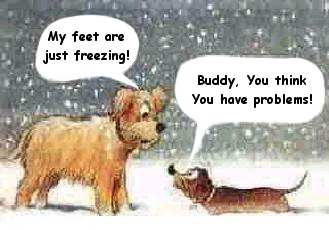 Freezing feet better than freezing ...